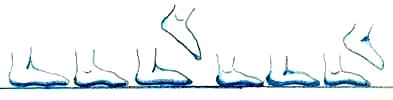 Description: Description: Description: Description: Description: http://www.susankramer.com/Image48.jpg