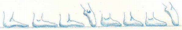 Description: Description: minuet - 3 walking steps and point