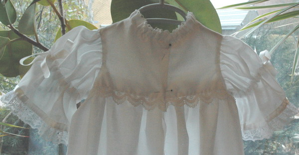 view of back of bodice