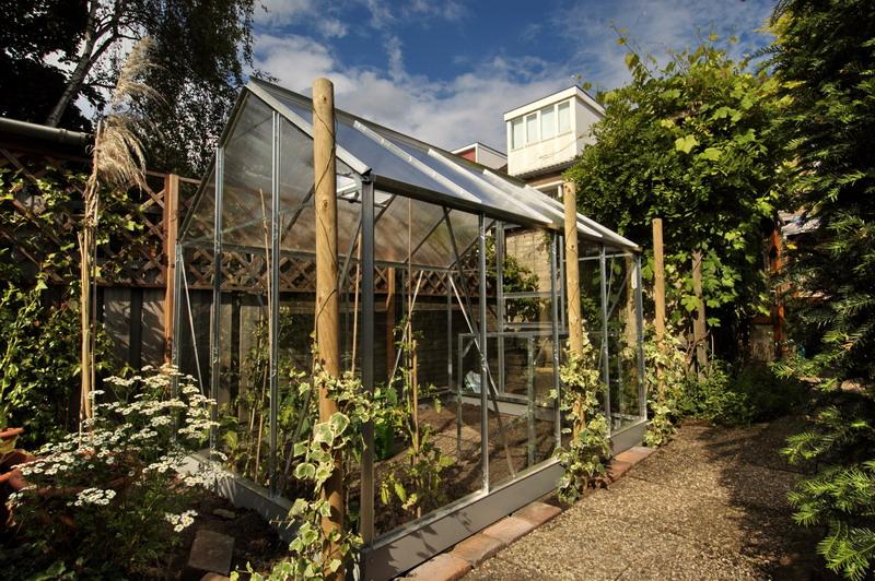 Description: Description: greenhouse showing ivy trees