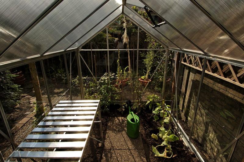 Description: Description: inside greenhouse