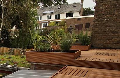 Description: Susan's roof meditation garden