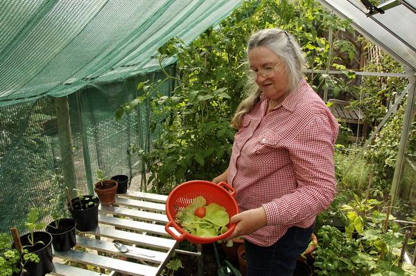 Description: Description: greenhouse showing shade cloth