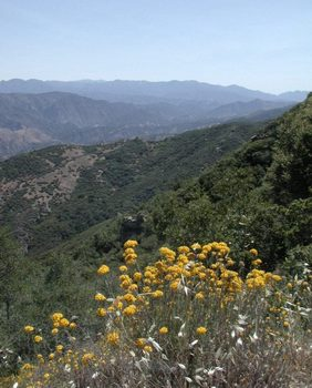 Looking down into Santa Ynez Valley from atop San Marcos Pass, Santa Barbara County, California