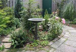 Description: Susan's summer meditation garden