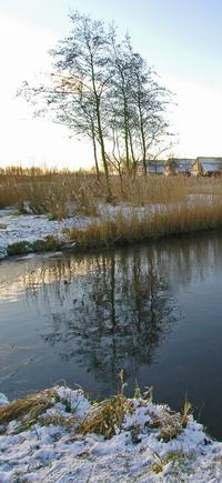 Photo of canal in snow, The Netherlands by Stan Schaap