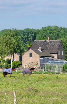Photo of farm in The Netherlands by Stan Schaap