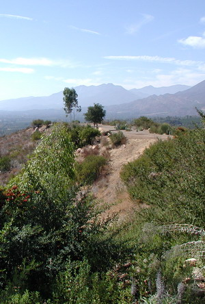 photo credit Susan Kramer walking the path up to Meditation Mount in Ojai, CA